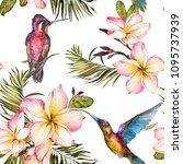 beautiful colorful colibri ... | Shutterstock . vector #1095737939