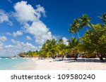palm trees on the tropical... | Shutterstock . vector #109580240