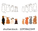 small dogs looking up sideways... | Shutterstock .eps vector #1095862349