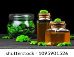 homemade pine cough syrup for... | Shutterstock . vector #1095901526