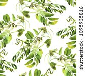 elegant seamless pattern with... | Shutterstock . vector #1095935816