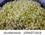 bangkok flower market  pak...   Shutterstock . vector #1096071818