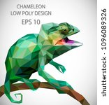 Stock vector vector design of chameleon in low poly style 1096089326