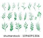 hand drawn set of green herbs ...   Shutterstock . vector #1096091306
