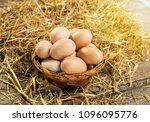 Organic Eggs In The Small...