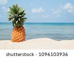 summer tropical landscape with... | Shutterstock . vector #1096103936