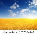 wheat field and sun in the sky  | Shutterstock . vector #1096126943