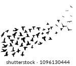 black flock birds flying... | Shutterstock .eps vector #1096130444
