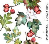 Hawthorn Green Leaves In A...