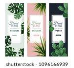 realistic house plants vertical ... | Shutterstock .eps vector #1096166939