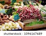 fresh bio vegetables and herbs... | Shutterstock . vector #1096167689