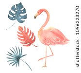 hand drawn watercolor tropical... | Shutterstock . vector #1096223270