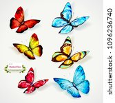 butterfly illustration. set of... | Shutterstock .eps vector #1096236740
