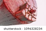 cross section through a muscle...   Shutterstock . vector #1096328234