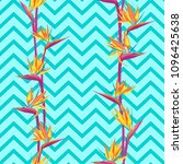 tropical flower bird of... | Shutterstock .eps vector #1096425638