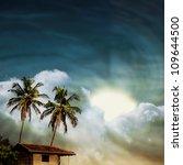 grunge palm background | Shutterstock . vector #109644500