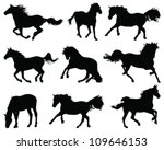 Stock vector silhouettes of horses vector 109646153