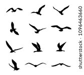Stock vector vector seagull sea gull seabird flying black silhouette set drawing free flight group icon 1096463660