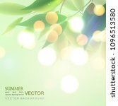 foliage and sunlight  bokeh ... | Shutterstock .eps vector #1096513580