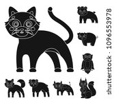 toy animals black icons in set... | Shutterstock . vector #1096553978