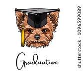 yorkshire terrier graduate.... | Shutterstock .eps vector #1096599089