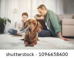 low angle portrait of cute dog... | Shutterstock . vector #1096658600