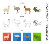 lama  ostrich emu  young... | Shutterstock .eps vector #1096713920