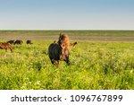 the wild horse  equus ferus  in ... | Shutterstock . vector #1096767899