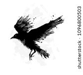 detailed crows painted in ink... | Shutterstock .eps vector #1096800503