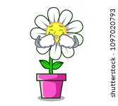 crying daisy flower mascot... | Shutterstock .eps vector #1097020793
