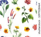 seamless plants pattern. floral ...   Shutterstock . vector #1097028464