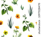 seamless plants pattern. floral ...   Shutterstock . vector #1097028470