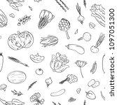 vector hand drawn doodle... | Shutterstock .eps vector #1097051300