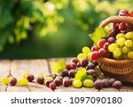grapes in a basket on a wooden... | Shutterstock . vector #1097090180