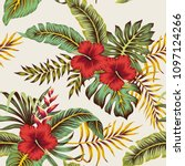 tropical vintage red hibiscus ... | Shutterstock .eps vector #1097124266
