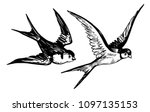Stock vector sketch of flying swallows hand drawn illustration converted to vector 1097135153