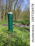 wooden painted wooden post in... | Shutterstock . vector #1097156978