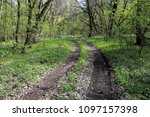 root road in green spring forest | Shutterstock . vector #1097157398