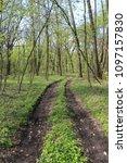 dirt road in green spring... | Shutterstock . vector #1097157830
