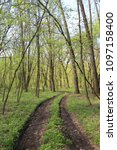 dirty patway in green spring... | Shutterstock . vector #1097158400
