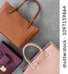 set of fashionable women's... | Shutterstock . vector #1097159864