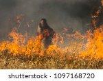 kelowna  british columbia... | Shutterstock . vector #1097168720