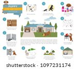 puppy care and safety in your... | Shutterstock .eps vector #1097231174