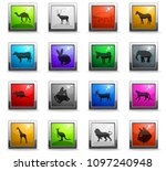 mammals web icons in square... | Shutterstock .eps vector #1097240948