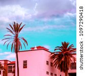 tropical  pink vibes.  vanilla... | Shutterstock . vector #1097290418