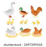 vector illustration set of... | Shutterstock .eps vector #1097299310