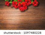 red hibiscus flower on caulked...   Shutterstock . vector #1097480228