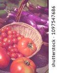summer vegetable harvest at... | Shutterstock . vector #1097547686