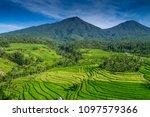 Jatiluwih Rice Terrace Bali ...