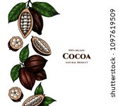 vector frame with cocoa. hand... | Shutterstock .eps vector #1097619509